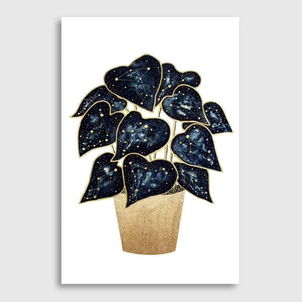 600x600-TheFlowDesign_Philodendron-Constellations