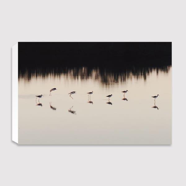600x600-canvas-future-image-quiuque-14-(landscape)