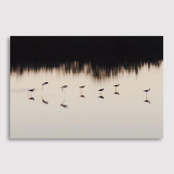 600x600-future-image-quiuque-14-(landscape)