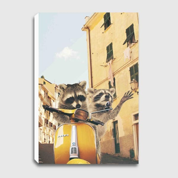 future-image-canvas-Raccoons-in-Italy